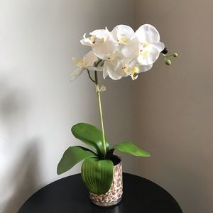 Other - Rose Gold Base Medium Faux Plant White Orchid